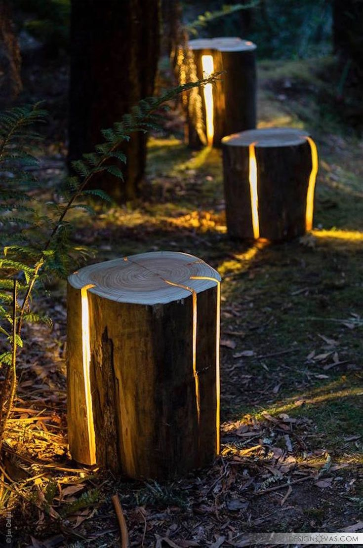 25 best ideas about tree stumps on pinterest tree stump for Hollow tree trunk ideas