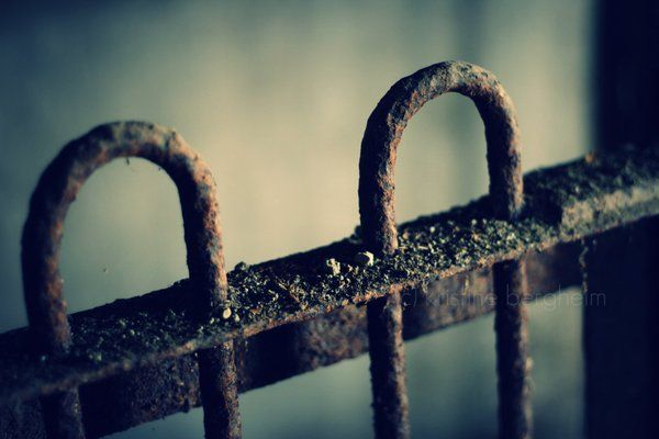 rusted cage by Linlith.deviantart.com
