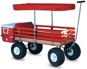 Need this wagon! Can haul 3 kids and cooler... I'm sold :)