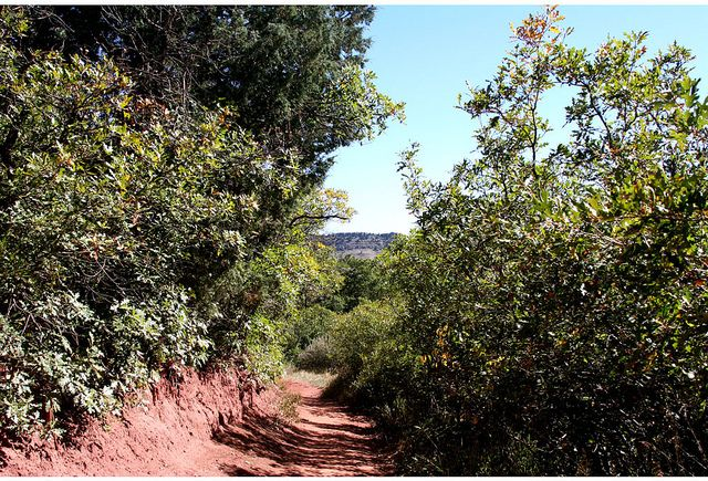 Follow the trail at Deer Creek Canyon Park by Jefferson County Colorado, via Flickr
