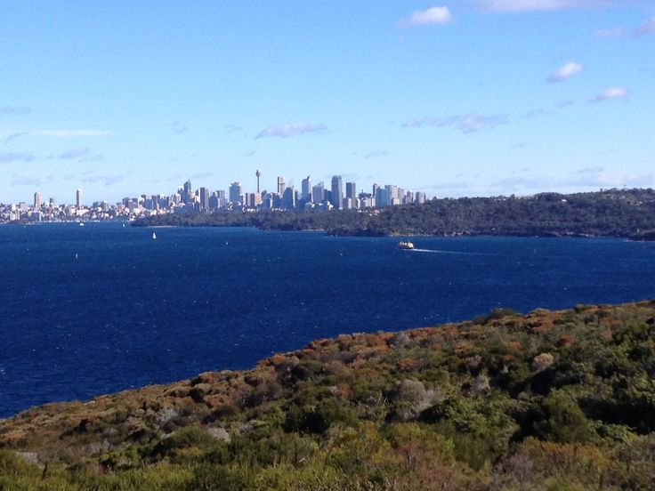Actual coastal walking. From north head, near where the whales were sighted,