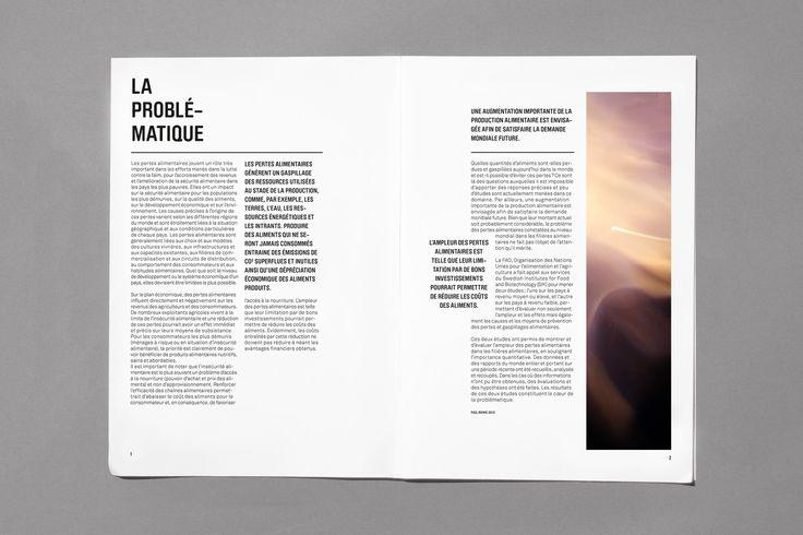 Mise en page, magazine graphique, gaspillage alimentaire, la problèmatique, graphisme, typographie