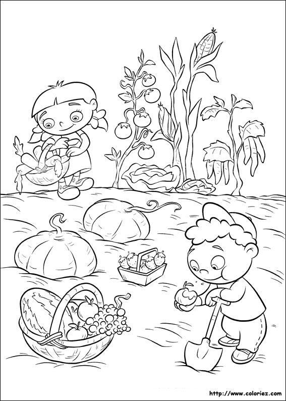 Coloriage d 39 annie au potager coloriage du potager for Jardin dessin