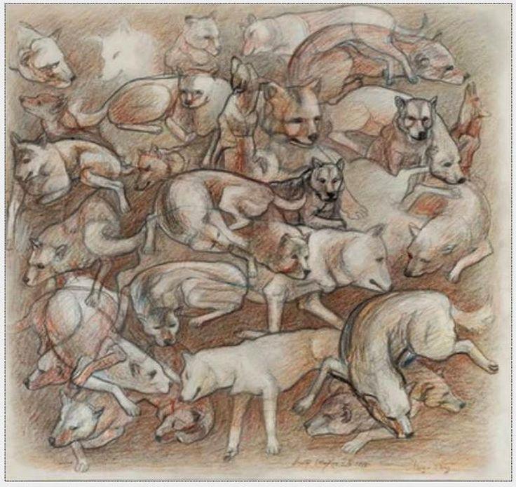 """Victor Shmokhin. """"Чау-чау (Снуф)  в разных ракурсах"""" Бумага/цветной карандаш. 37,3х39,5.(№3,635)."""
