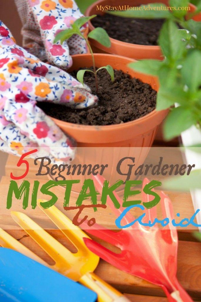 5 Beginner Gardener Mistakes To Avoid - Before you start your garden learn 5 beginner gardener mistakes to avoid this gardening season.