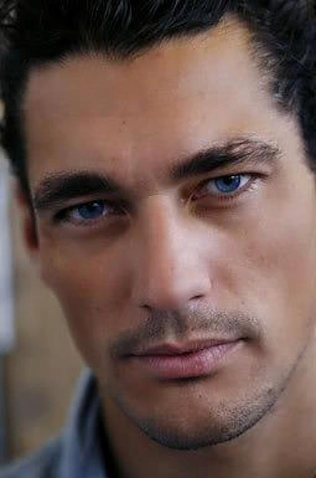 Jericho Barrons,  Gideon Cross,  Gabriel Emerson. Fever series - David James Gandy