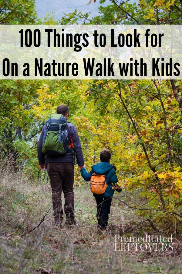 100 Things to Look for on a Nature Walk- This list has a lot of cool items to watch and listen for the next time you and your kids are out exploring nature.
