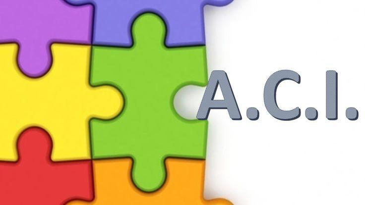 Plantilla ACI adaptación curricular con estándares de aprendizaje editable