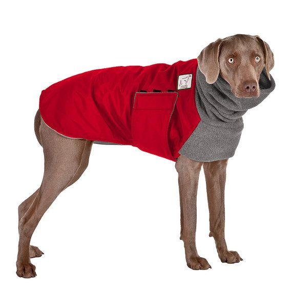 If your dog is not a Weimaraner or is a mixed breed, please contact us about making a custom coat for your dog. Please provide the following                                                                                                                                                                                 More