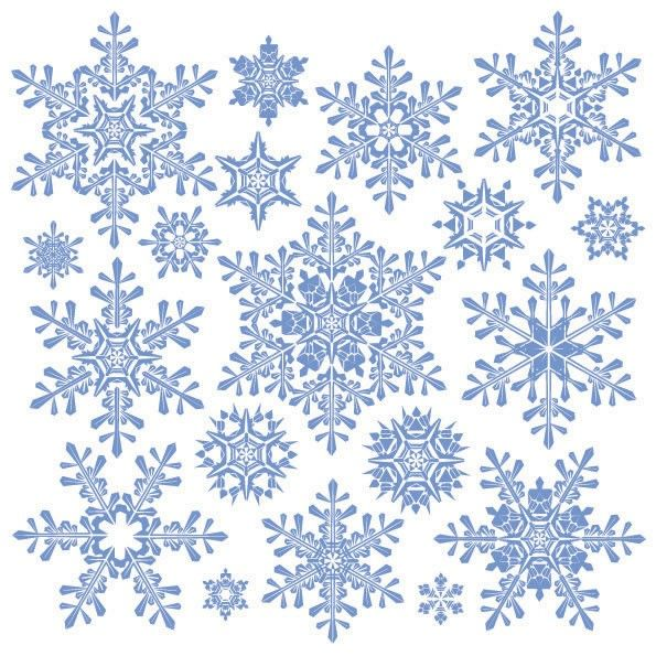 Each snowflake here has the symmetries of a regular hexagon.