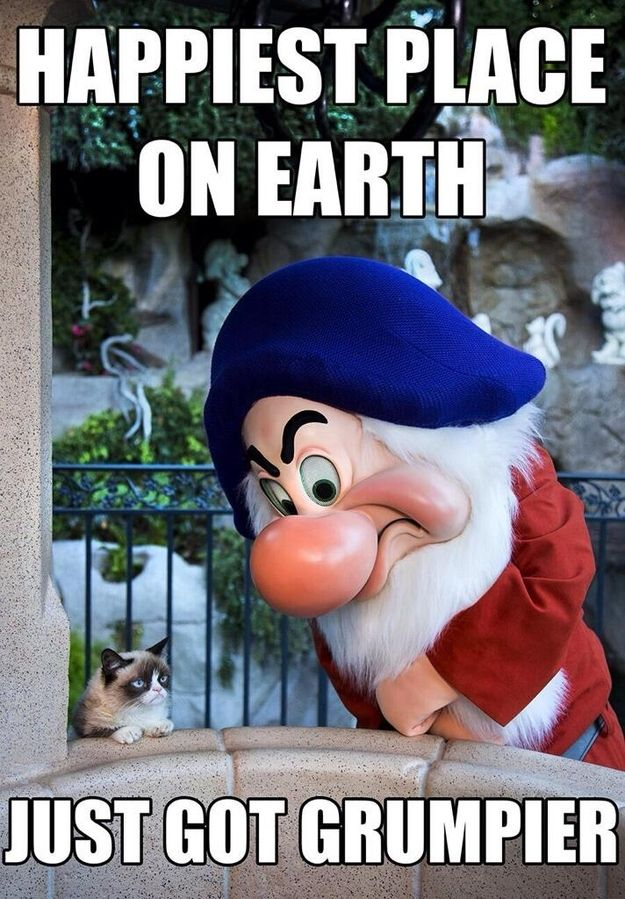 The only creature who doesn't need to be happy in the happiest place on earth... Grumpy Cat! I wish I could have seen her recent Disneyland tour. The video in this link for #DisneySide is priceless. :)