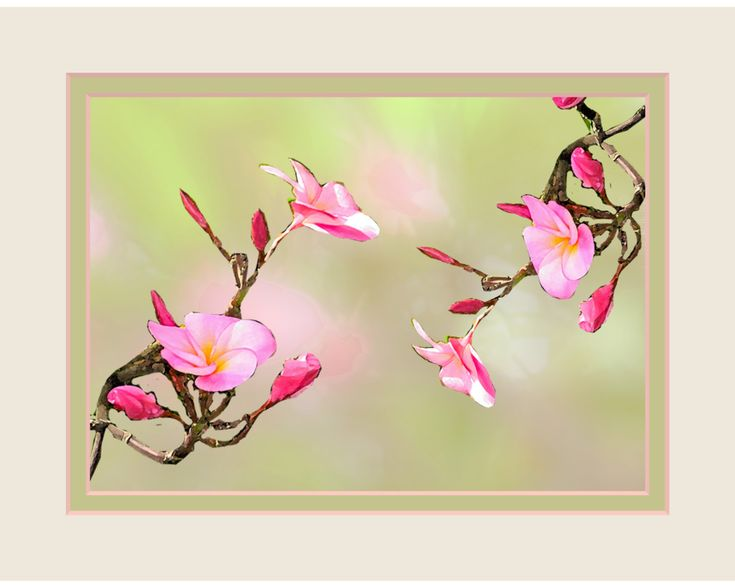Floral Wall Art. Pink Flowers. Frangipani. Matted 8 x 10 size. Ready to Frame. For Your Wall Grouping. Saturated Colors. Original Design. by VintageArtForLiving on Etsy https://www.etsy.com/listing/474976312/floral-wall-art-pink-flowers-frangipani