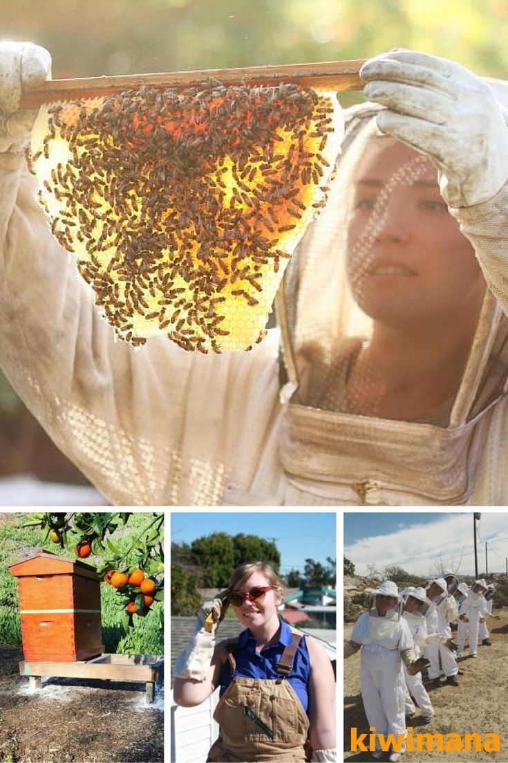 """Hilary Kearney is from """"Girl Next Door Honey"""", She does live Bee Removals and sells local honey in the San Diego, California part of the world. Hilary started beekeeping in 2010 after reading a beekeeping book she bought for her boyfriend."""