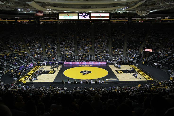Iowa Hawkeyes Wrestling | Iowa Hawkeyes Wrestling WallStar