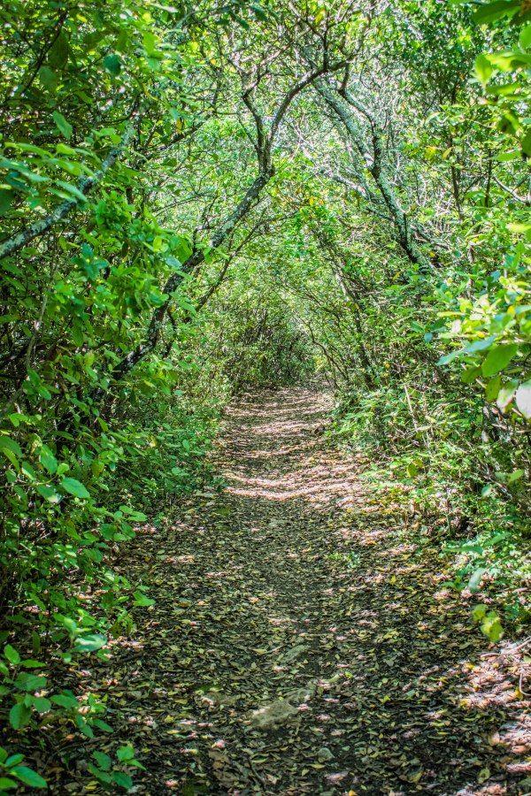 Epingle Sur Bains Site Nature