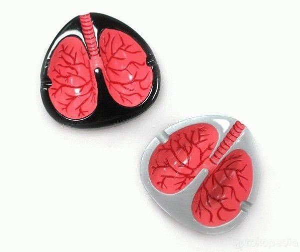 Coughing Ashtray -  Asbak rokok berbentuk paru-paru yang dapat mengeluarkan suara batuk  - Jika meletakkan rokok di sisi kiri, asbak akan mengeluarkan suara teriakan  - Jika meletakkan rokok di sisi kanan, asbak akan mengeluarkan suara orang yang sedang batuk  - Harga Rp 60.000