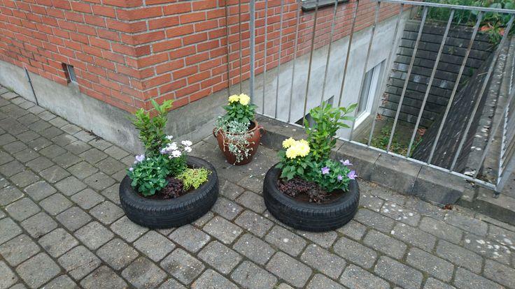 """Blomsterkrukker lavet af et par gamle 14"""" bildæk, hvori der er lavet en bund af en tilpasset træplade."""