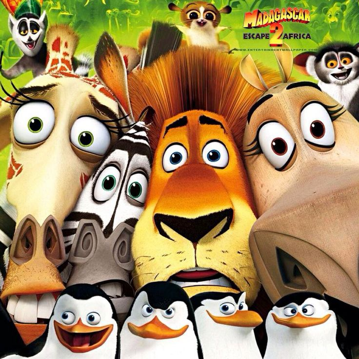 Madagascar 2 Cartoon Characters : Best images about madagascar ^o^ on pinterest