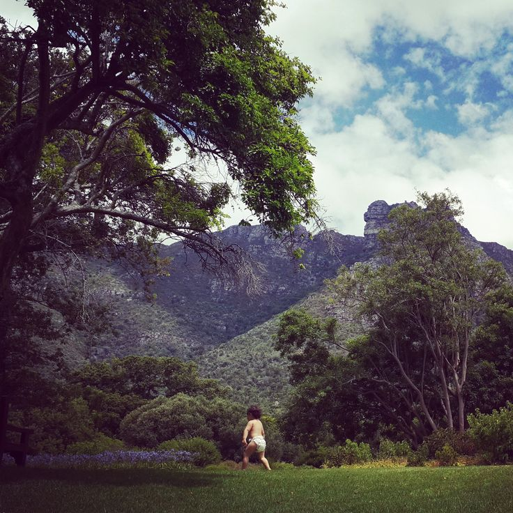 Kirstenbosch National Botanical Gardens - The most beautiful garden in Africa and the best place to run around with your nappy on - only if you're a toddler...  Cape Town, South Africa. (Photo: N.Martin)