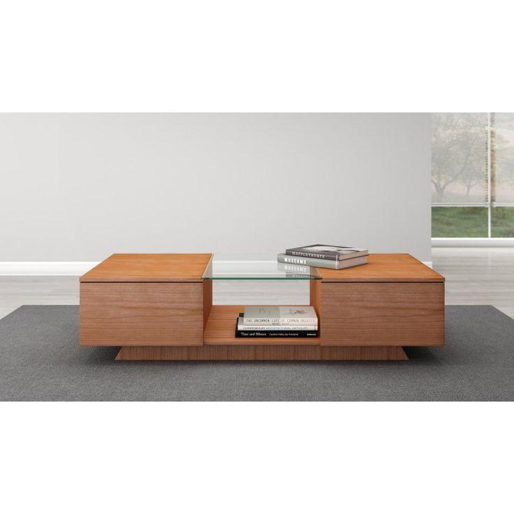 Sleek Contemporary Coffee Table - FT53CCNC