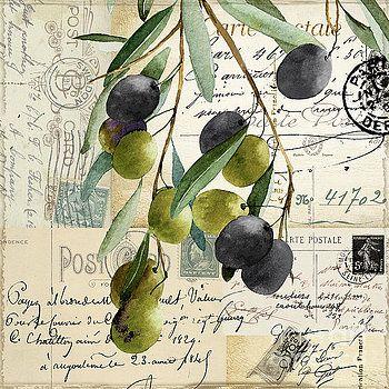 37 best Olive love images on Pinterest | Olive oil, Olives and ...