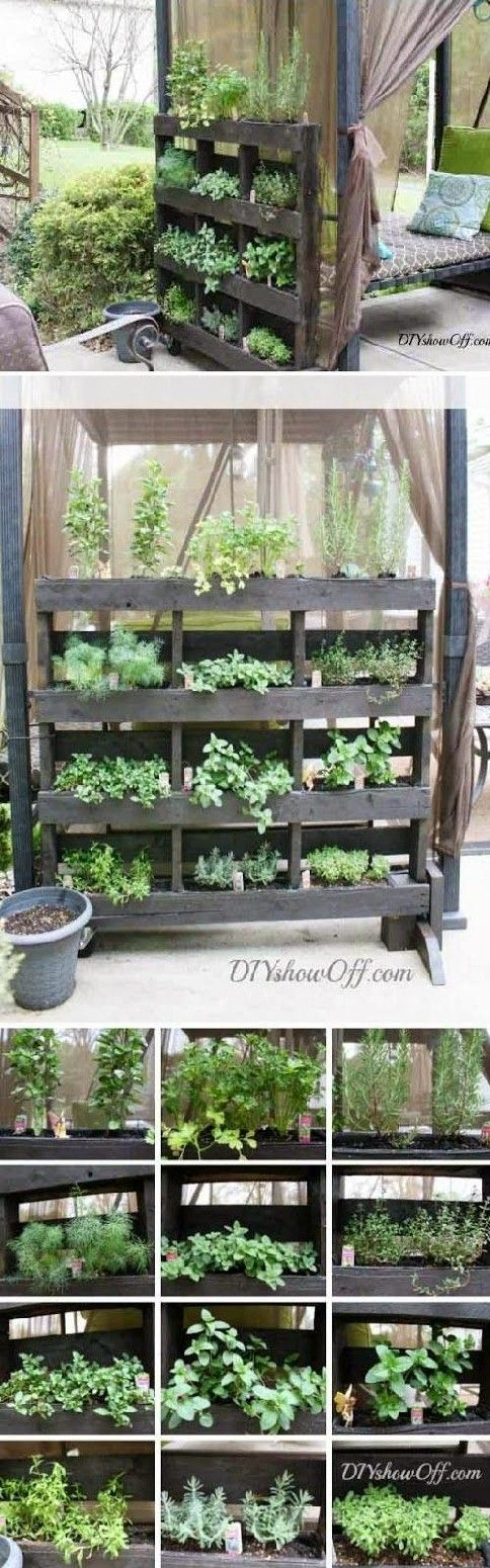 Awesome DIY Patio or Balcony Herb Garden Ideas Picture 22 ...Read More...