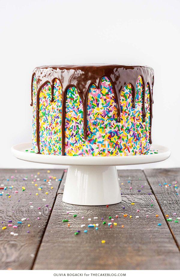 Funfetti Sprinkle Cake with Drippy Chocolate Ganache | by Olivia Bogacki for TheCakeBlog.com