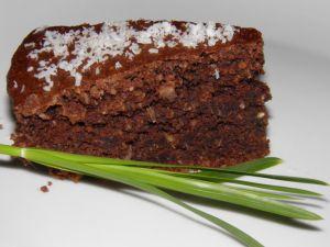 Torta cocco e cioccolato vegano