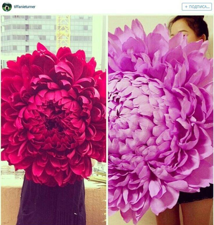 Big paper flowers