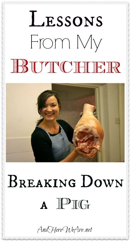 Lessons From My Butcher: Breaking Down a Pig   And Here We Are...