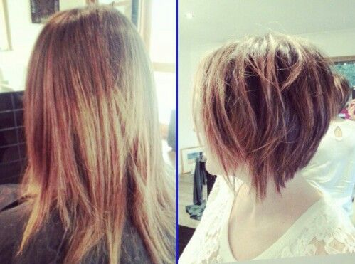 Swell 1000 Images About Concave Bob On Pinterest Bobs My Hair And Short Hairstyles Gunalazisus