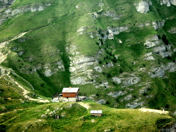 A cottage in the Romanian Carpathian mountains. Let us arrange a night for you and wake up in an amazing scenery. Romania, the surprisingly green garden of Europe.