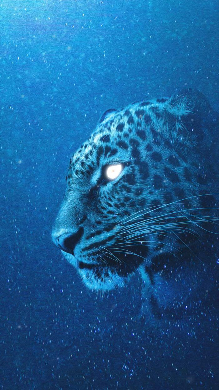 Animal Archives Iphone Wallpapers Iphone Wallpapers In 2021 Snow Leopard Wallpaper Snow Leopard Art Leopard Wallpaper