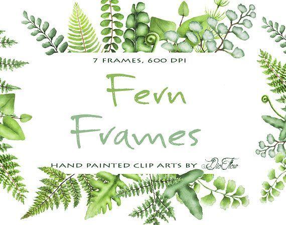 Watercolor Fern Clipart Greenery Frames Clip Art Ferns Leaf Leaves