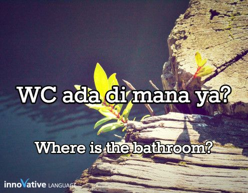 WC ada di mana ya? is Where is the bathroom? in Indonesian. Click here to get FREE audio by a native speaker: http://www.indonesianpod101.com/indonesian-vocabulary-lists/top-15-questions-you-should-know-for-conversations #indonesian #learnindonesian #indonesianpod101 #indonesia