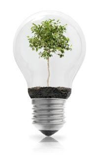 Let No Light Bulb Appear: Innovation's Best When It's Invisible