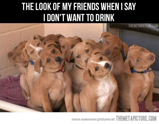 The look of my friends…