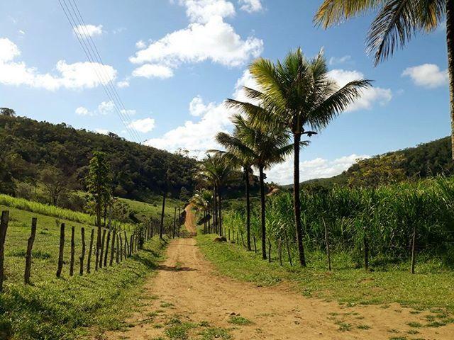Brasilien Bahia 508 ha Fazenda - neuer Kaufpreis 1.200.000 BRL = ca. 299.000 Euro zu verkaufen http://ift.tt/2HskZFN