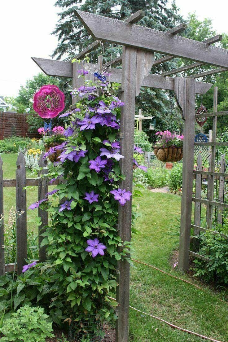 Flower Garden Ideas Wisconsin 1834 best outside gardening ideas images on pinterest | garden
