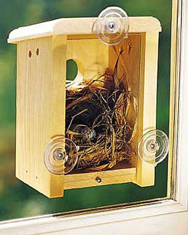 "Window Nest Box    From gathering twigs, to laying eggs, and finally the chicks hatching, you can observe the whole nesting process right outside your window with this handcrafted nest box. It has suction cups that attach easily to any window, and a 1-1/2"" opening that suits most song birds.  Wow, this is amazing!"