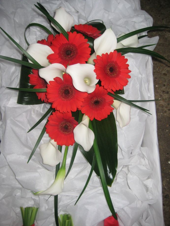gerber daisies and calla lilies | White Calla Lilies, Red Gerberas, Lily Grass, Aspidistra Leaves Bridal ...