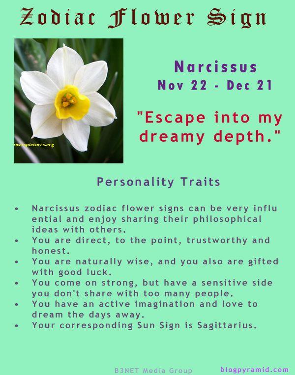 Divine Spark:  #Zodiac Flower Sign ~ Narcissus November 22 - December 21 (#Sagittarius).