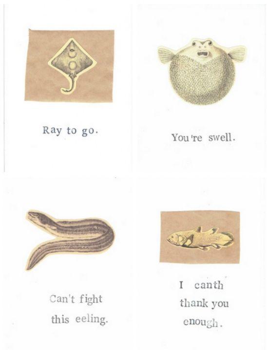 Marine Biology Natural History Note Card Set | fish puns | marine biology puns|