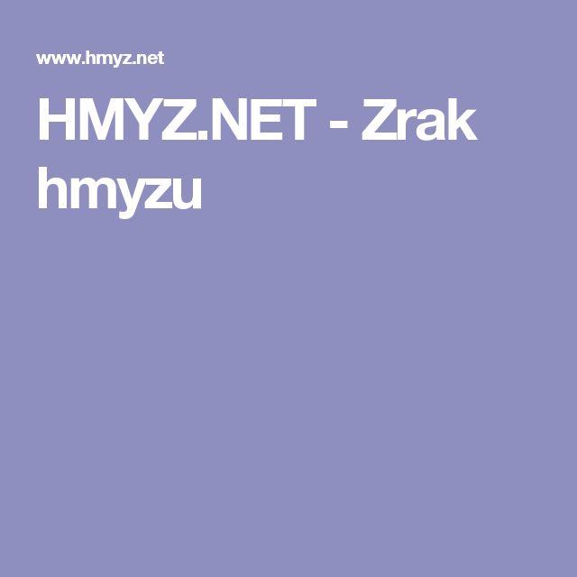HMYZ.NET - Zrak hmyzu