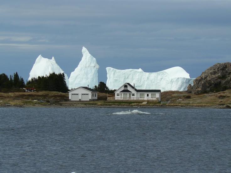 Newfoundland. Twillingate.