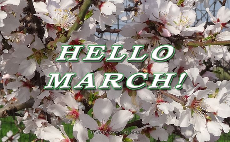 March is here! The beginning of Spring! It's also that time of year that we start thinking about Summer, so we get more anxious to start a diet or start going to the gym more often. It's that time of the year that we make all those new resolutions, following the new year's resolutions. I … Continue reading Hello March!