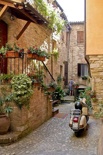 Beautiful alley, such a dreamy place to live in.