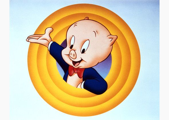 Image result for porky pig