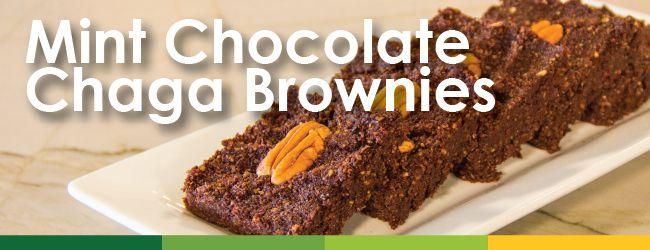 Immune-Health-Month-Chaga-Brownies