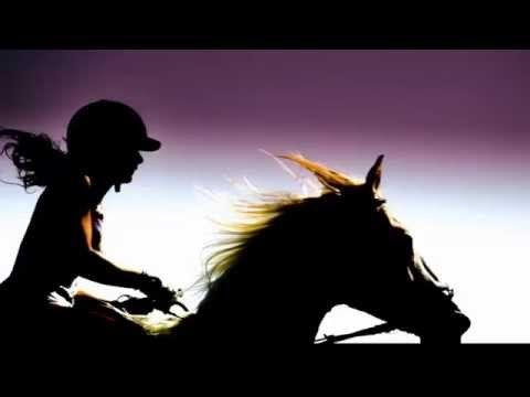 Horse vs Camaro | Jack Carter - Summer 2014
